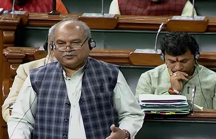 Govt Doesn't Have Data On Loss Incurred By Farmers During Pandemic: Agriculture Minister in Parliament