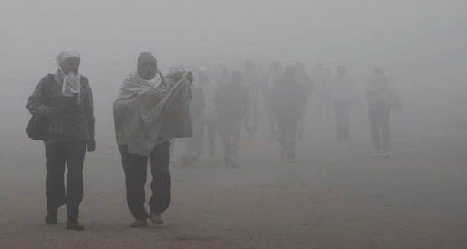 Weather Update: Amid Cold Wave, Dense Fog Engulfs Northern India; Possibility Of Rain In Several Places