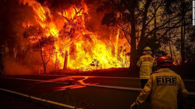 Looking Back At 2019: Bushfire Terror In Australia