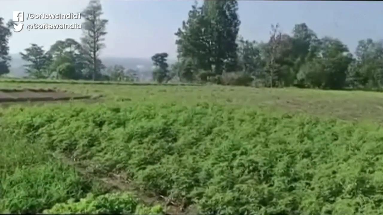 Uttarakhand: Organic Farming Village On Paper Yet