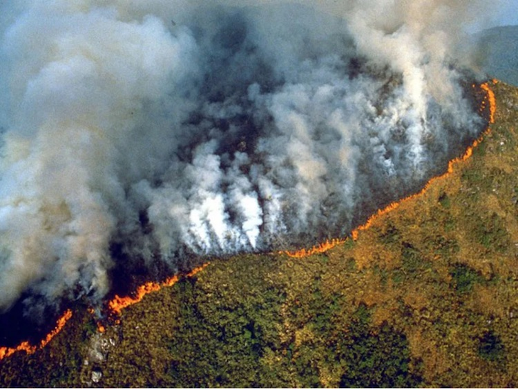 Looking Back At 2019: When The Amazon Was On Fire
