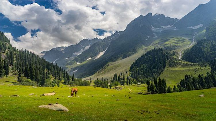 Will The Entry Of Tourists In J&K Change The Situa
