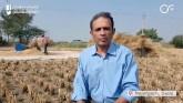 Delhi: Najafgarh Farmers Turn Stubble Problem Into