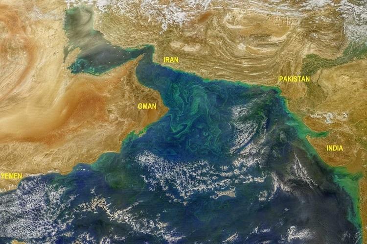 Harmful Algae Blooms In Arabian Sea Linked To Hima