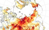 Watch: Dramatic Arctic Fires and Sea Ice Melt, Sho