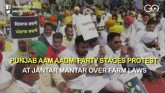 Punjab AAP Stages Protest At Jantar Mantar Over Fa