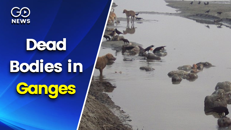 Dead Bodies in Ganges:  Human Rights Body issues n