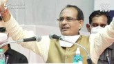 MP Govt Slashes Budget For Cow Welfare, Allots Rs