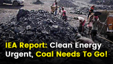 Clean Energy Renewable Energy Urgent Transition Ne