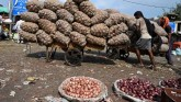Centre Bans Onion Exports In A Bid To Tame Inflati