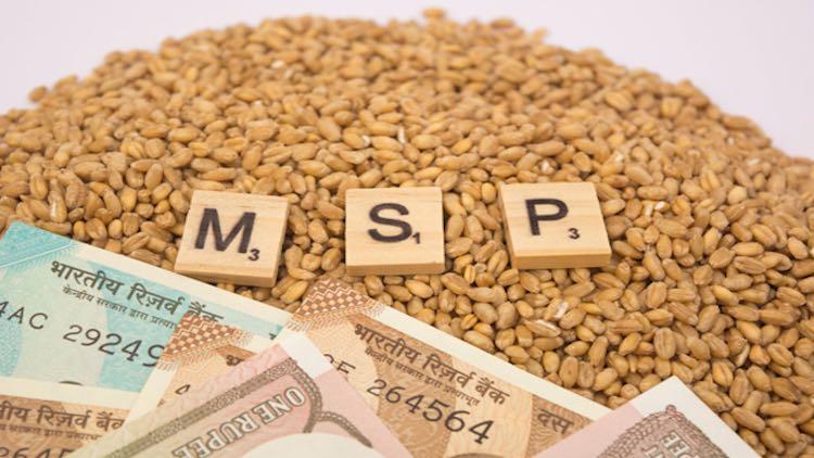 MSP and Public Procurement: Quick Guide