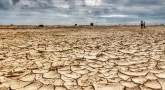 MP Farmers Stare At Drought Due To Rain Deficit In