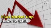 PSU Market Cap 6.19%