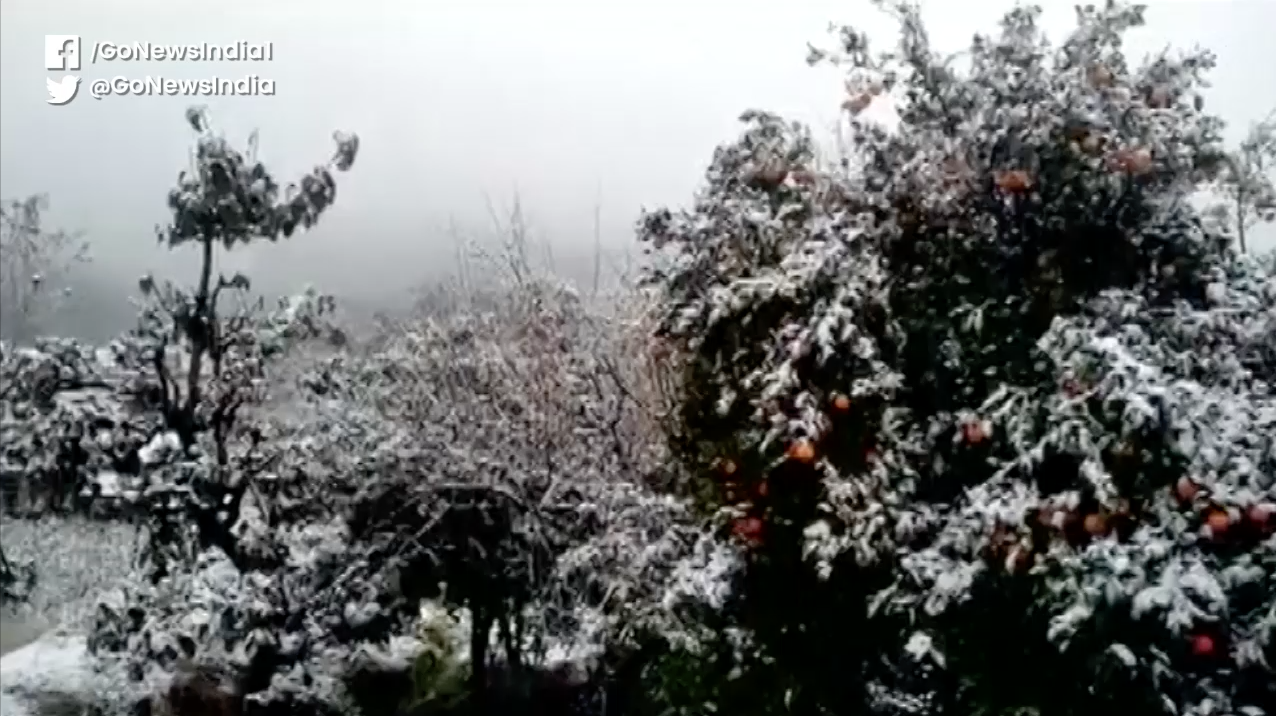 Heavy Snowfall In Uttarakhand's Pithoragarh