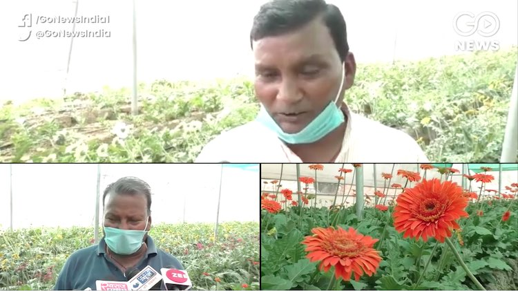 Uttarakhand: Flower Trade Wilts Under Lockdown