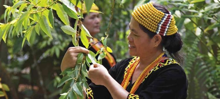 World Indigenous Day: UN Chief Spotlights Indigeno