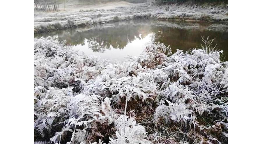 Parts Of Nagaland Receive Snowfall After Decades