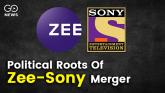 Zee Sony Merger Matrix