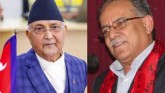 Nepal Parliament Dissolution Challenged In SC, Rul