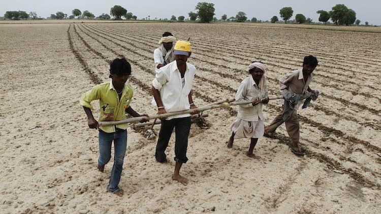 Drought Threat Looms Over 20 Madhya Pradesh Distri