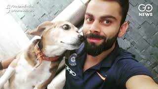 PETA: Virat Kohli Is 'Person Of the Year'