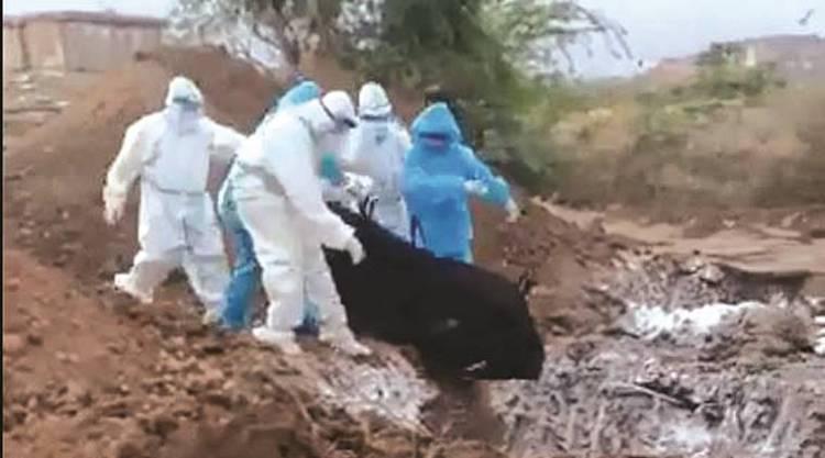 Karnataka Shocker: Bodies of COVID-19 Victims Thro