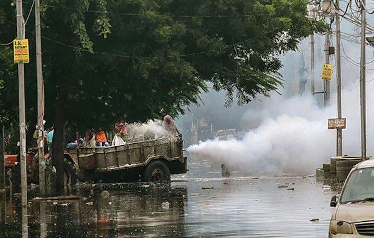 Dengue havoc after rain in Bihar, more than 900 ca