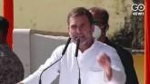 Bihar Elections: Rahul Gandhi And Tejashwi Yadav A