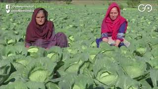J&K: Organic Farming Changing Lives In Rajouri