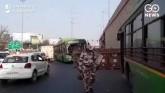 Bharat Bandh: Low Traffic Movement, Police Deploye