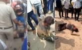 Gurugram: Cow Vigilantes Brutally Assault Man With