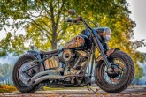 Why Did Harley Davidson Cut Short India Ride?