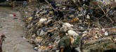A Third of World's Children Poisoned by Lead, UNIC