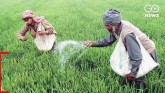 Indiscriminate Use Of Chemical Fertilisers Puts Hu