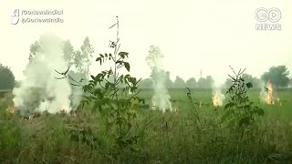 SC Crackdown On Stubble Burning Amid Delhi-NCR Pol