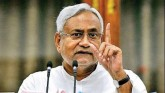 Bihar Polls: Nitish Announces Govt Jobs To Kin Of