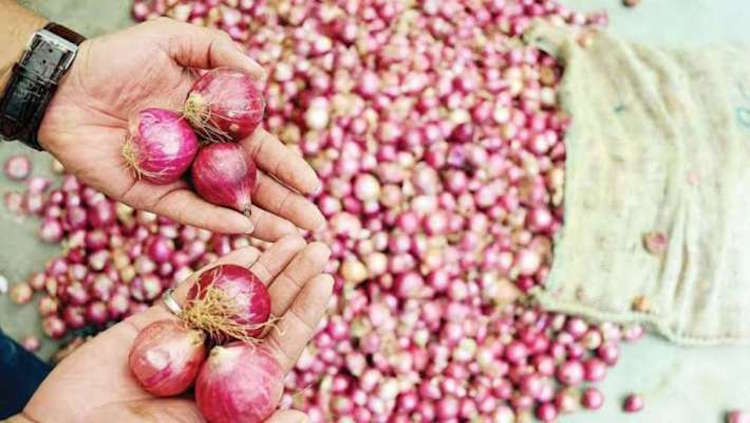 The Great Onion Robbery: Prices Skyrocket, Thefts