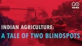 Indian Agriculture: A Tale of Two Blindspots
