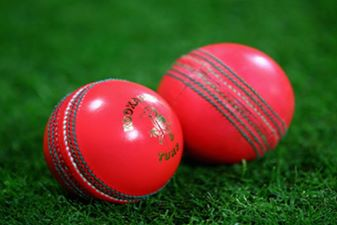 Pink Test: Historic Day-Night Match Between India
