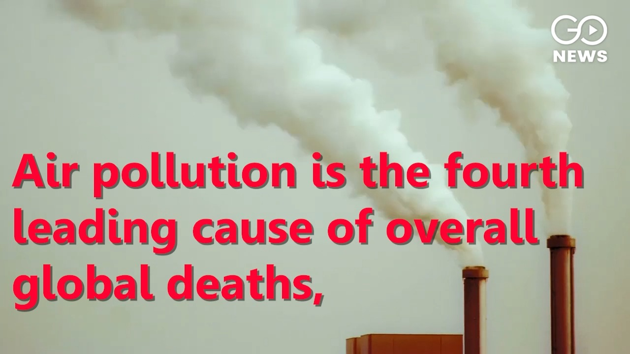 Air Pollution Killed Over 1.16 Lakh Infants In India Last Year