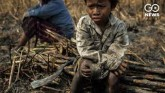 Gujarat Leads In Child Labour, Non-Payment Of Wage