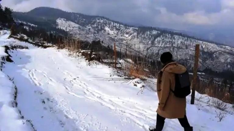 Tourists Enjoy Snowfall In J&K's Pahalgam