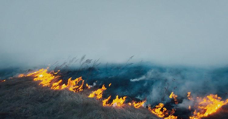 Haryana: Farmers burning stubble hostage police, F