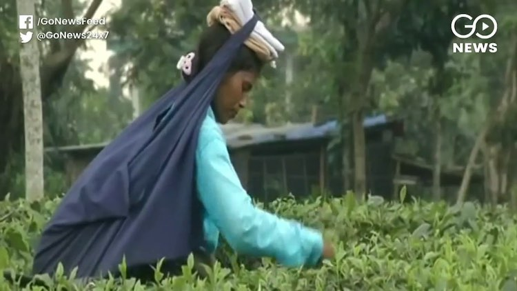 Tea-Seller Turns Into Guardian Of Communal Harmony