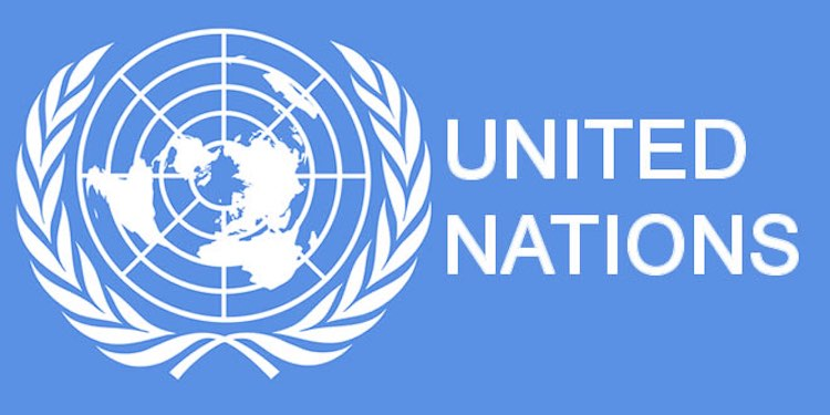 India shocked by UN, citizenship law declared as d