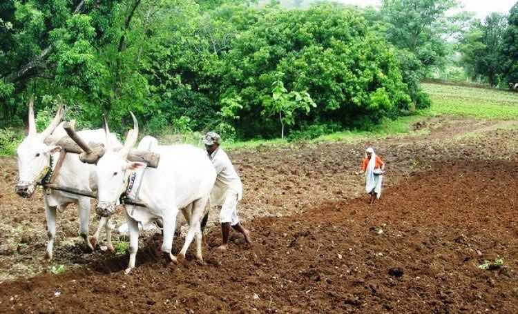 How will Modi double farmers' income after agricul