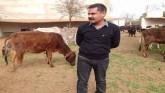Meet Dr. Tapesh Mathur: The Legend Vet Of India