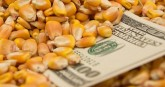 Indian Farmers Get The Lowest Subsidies, China Giv